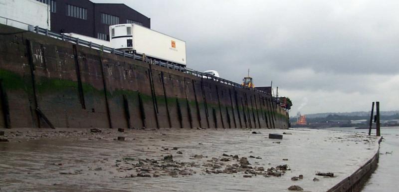 Peruvian Wharf Survey